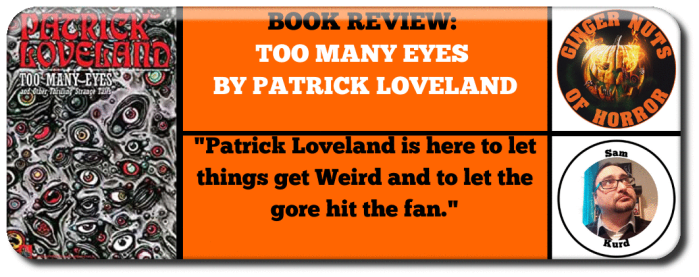 book-review-too-many-eyes-by-patrick-loveland_orig